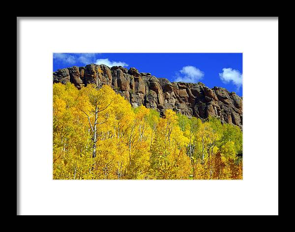 Fall Colors Framed Print featuring the photograph Aspen Glory by Marty Koch