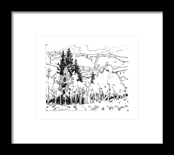 Aspens Framed Print featuring the drawing Aspens Against the Evergreens by John Lautermilch
