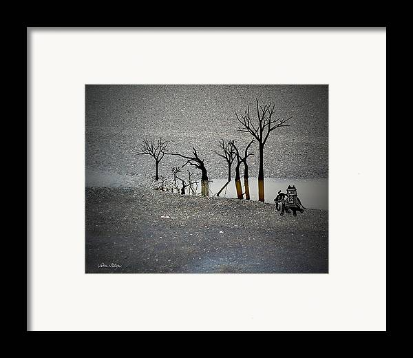Rain Framed Print featuring the digital art Asphalt Oasis by Sabine Stetson
