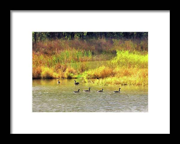 Cedric Hampton Framed Print featuring the photograph At Home In Monee by Cedric Hampton
