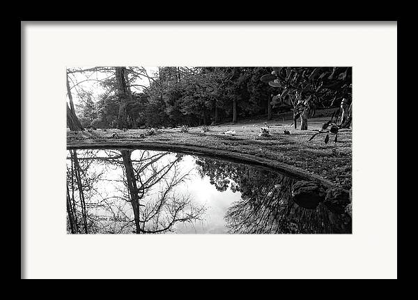 Water Framed Print featuring the photograph At Peace by Donna Blackhall