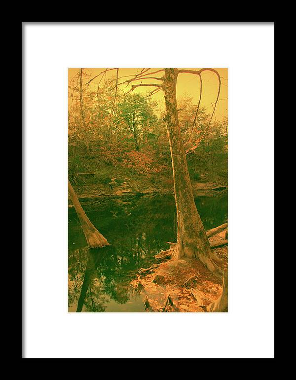 River Framed Print featuring the photograph At The Bank by Nina Fosdick