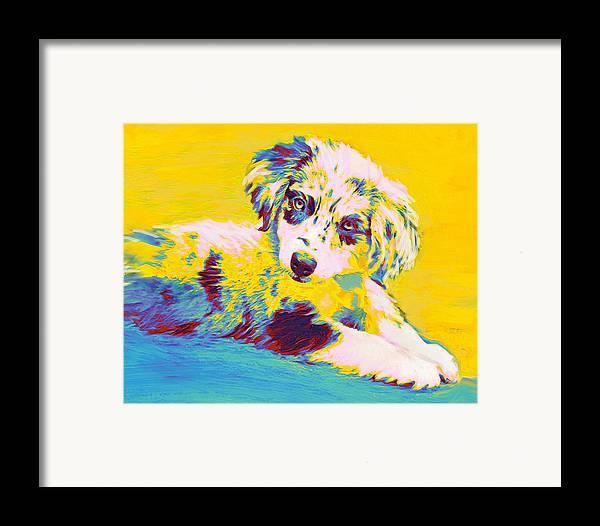 Aussie Framed Print featuring the digital art Aussie Puppy-yellow by Jane Schnetlage