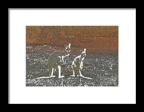 Australain Framed Print featuring the digital art Australian Red Kangaroos by Kylie Jones