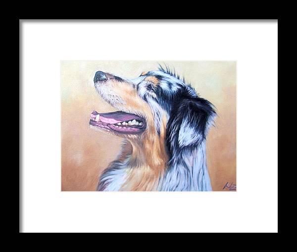 Dog Framed Print featuring the painting Australian Shepherd Dog by Nicole Zeug