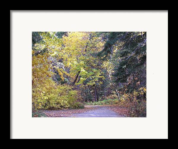 Autumn Photographs Framed Print featuring the photograph Autum Colors by Louise Magno
