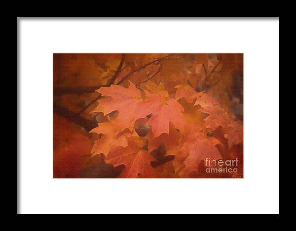 Autumn Framed Print featuring the photograph Autumn 2 by Jeff Breiman