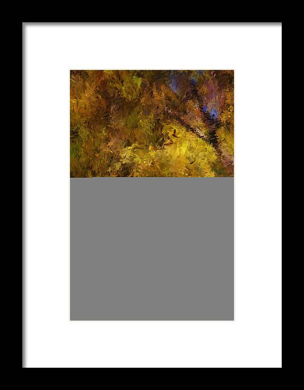 Abstract Digital Painting Framed Print featuring the digital art Autumn Abstract by David Lane