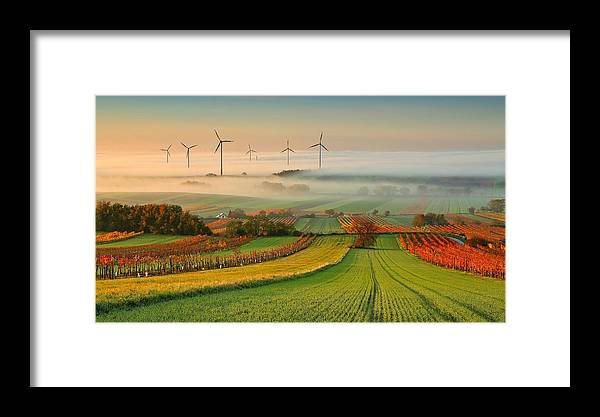 Landscape Framed Print featuring the photograph Autumn Atmosphere In Vineyards by Matej Kovac