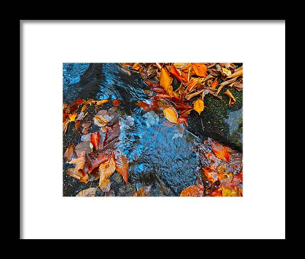 Autumn Landscape Framed Print featuring the photograph Autumn B 2015 183 by George Ramos