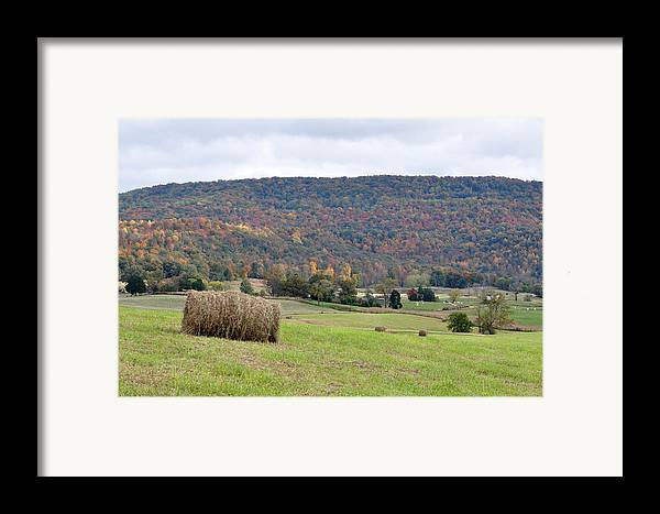 Landscapes Framed Print featuring the photograph Autumn Bales by Jan Amiss Photography