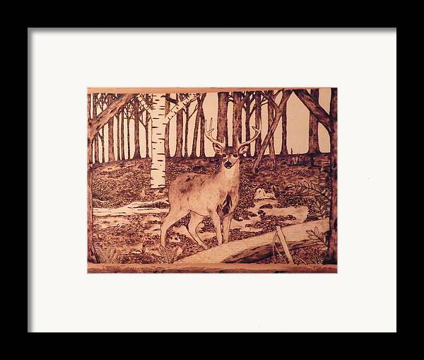 Forest Framed Print featuring the pyrography Autumn Deer by Andrew Siecienski