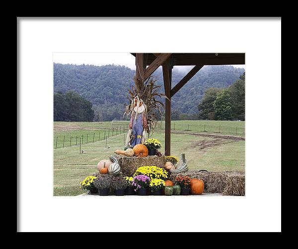 Framed Print featuring the photograph Autumn Display by Linda A Waterhouse