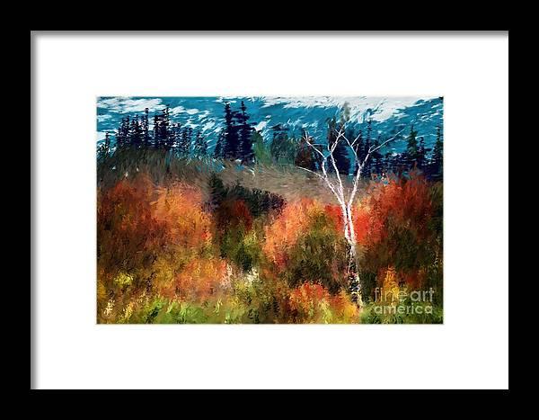 Digital Photo Framed Print featuring the digital art Autumn Feel by David Lane