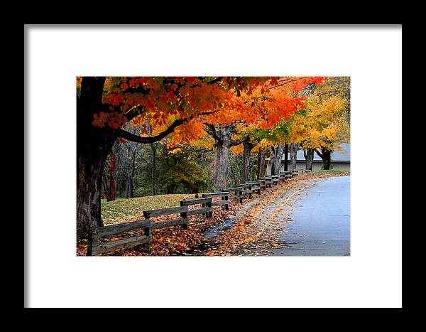 Fall Framed Print featuring the photograph Autumn Fence by Gary Bydlo