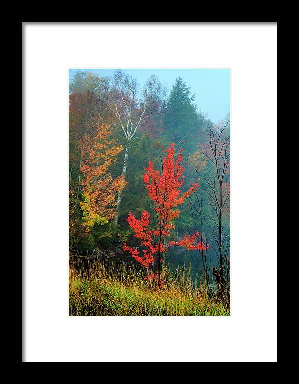 Color Framed Print featuring the photograph Autumn Fire by MaryGail Perkins