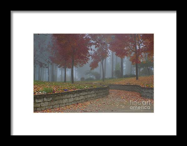 Autumn Framed Print featuring the photograph Autumn Fog by Idaho Scenic Images Linda Lantzy