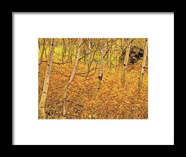 Framed Print featuring the digital art Autumn Foliage Lc by Modified Image