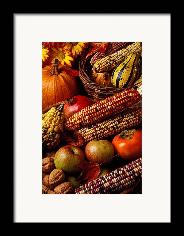 Autumn Framed Print featuring the photograph Autumn Harvest by Garry Gay