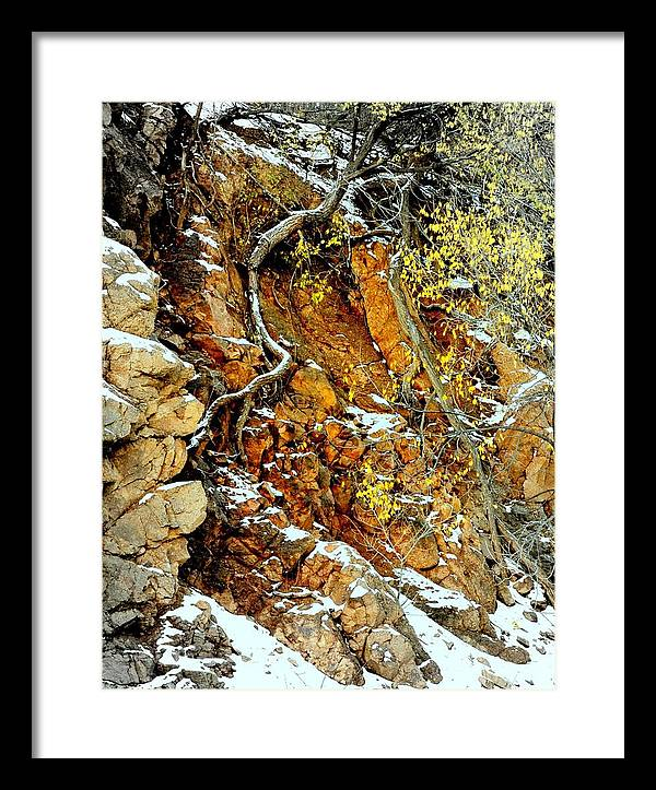 Rocks Framed Print featuring the photograph Autumn High.. by Al Swasey