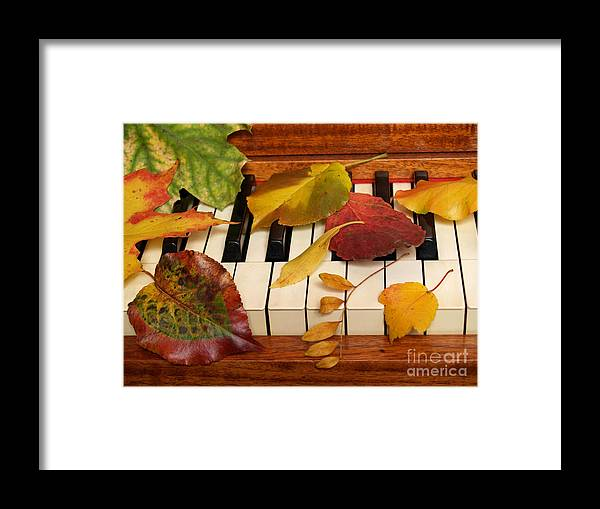 Piano Framed Print featuring the photograph Autumn Leaves Tickle The Ivories by Anna Lisa Yoder