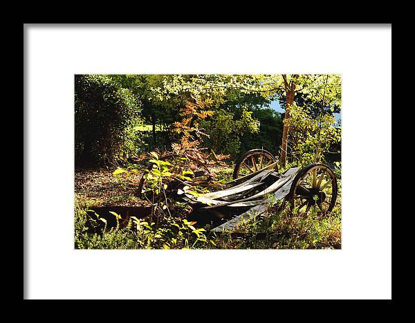 Vintage Framed Print featuring the photograph Autumn Memories by Pamela Patch