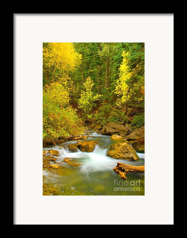Utah Framed Print featuring the photograph Autumn On Big Cottonwood River by Dennis Hammer