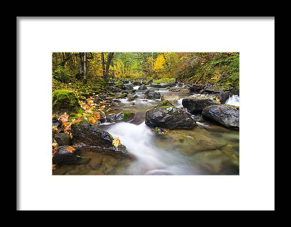 Fall Framed Print featuring the photograph Autumn Passing by Mike Dawson