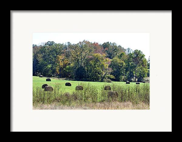Landscapes Framed Print featuring the photograph Autumn Pastures by Jan Amiss Photography