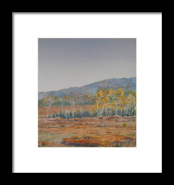 Autumn Framed Print featuring the painting Autumn Poplars by Debbie Homewood