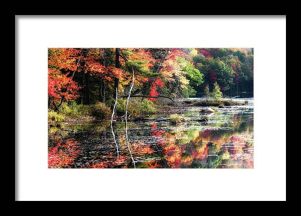 Adirondacks Framed Print featuring the photograph Autumn Reflection by Michael Hine
