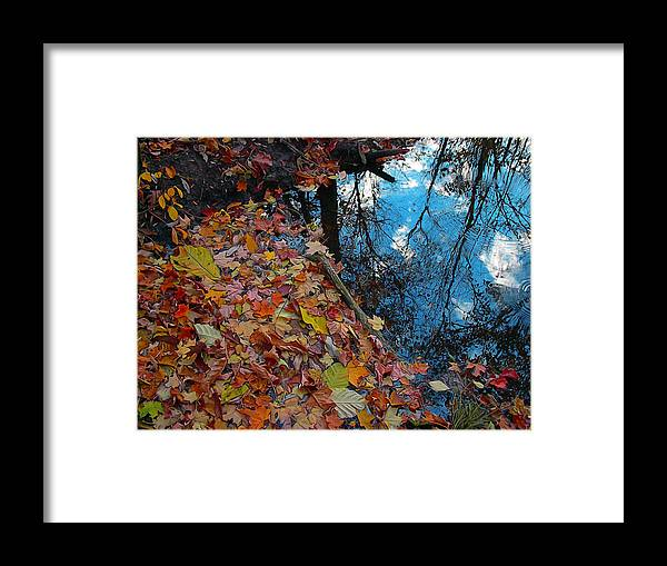 Autumn Framed Print featuring the photograph Autumn Reflections by Gina Signore