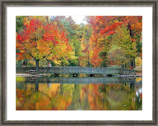 Autumn Reflections by Michael Biggs