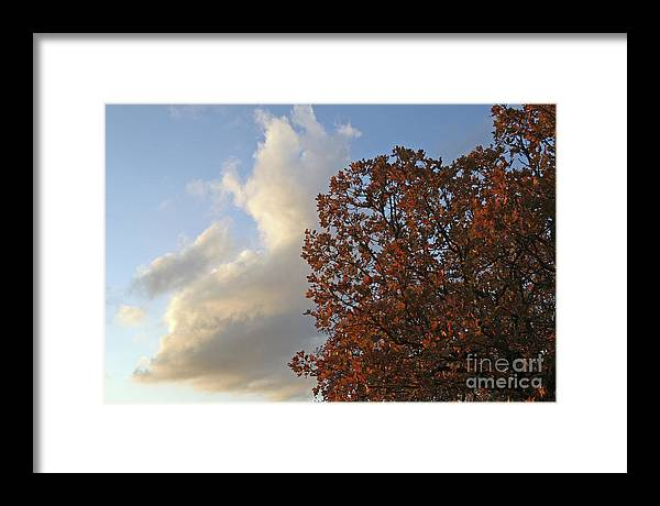 Autumn Framed Print featuring the photograph Autumn Sky by Jeannie Burleson