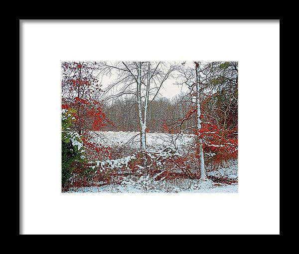 Autumn Framed Print featuring the photograph Autumn Snow by Kevin Jackson