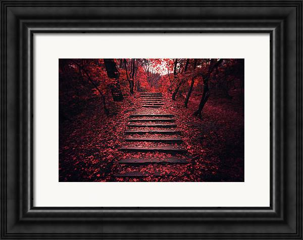 Autumn Stairs by Zoltan Toth