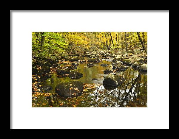 Autumn Framed Print featuring the photograph Autumn Stream Reflections by Stephen Vecchiotti