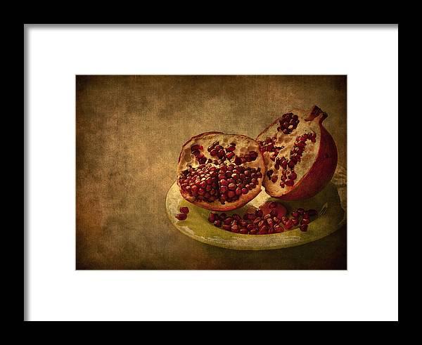 Pom Framed Print featuring the photograph Autumn Treat by Evelina Kremsdorf