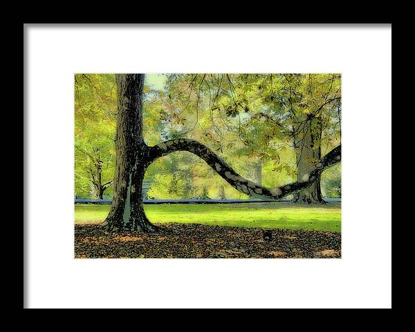 Autumn Framed Print featuring the photograph Autumns Bench by JAMART Photography