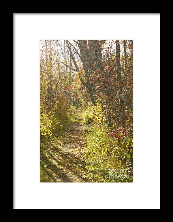 Path Framed Print featuring the photograph Autumns Path by Elaine Mikkelstrup