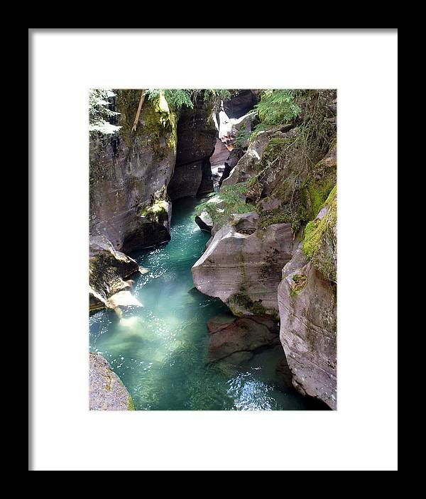 Glacier National Park Framed Print featuring the photograph Avalanche Creek Glacier National Park by Marty Koch