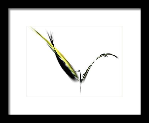 Avian Framed Print featuring the digital art Avian Zen - Fractal Art by NirvanaBlues
