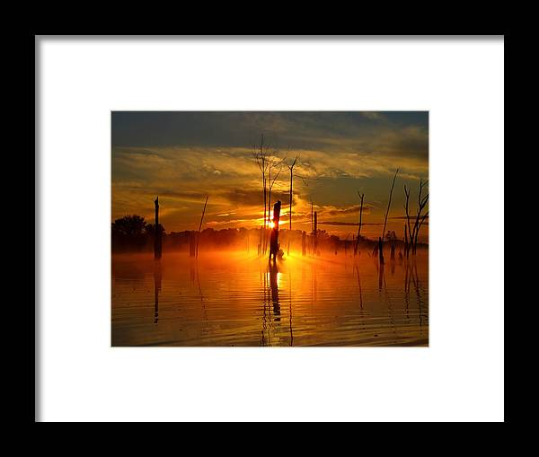 Water Framed Print featuring the photograph Awakened To Calm by William Caine