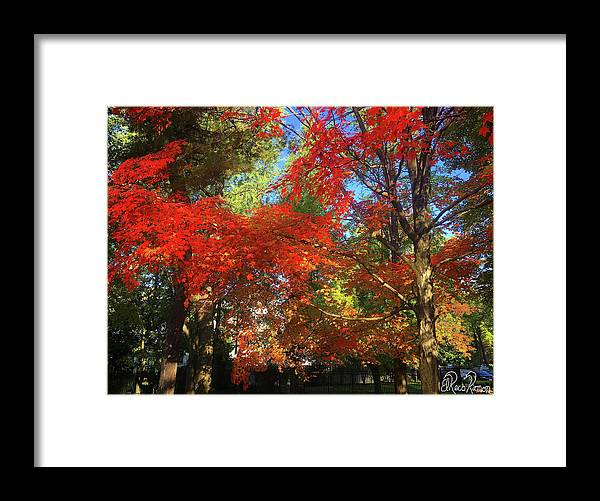 Fall Framed Print featuring the photograph Awesometumn by ElReco Ramon