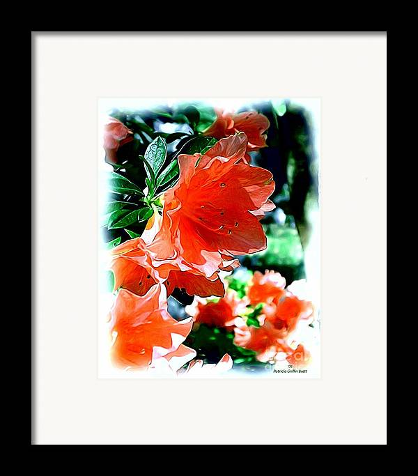 Fine Art Framed Print featuring the painting Azaleas In The Spring by Patricia Griffin Brett