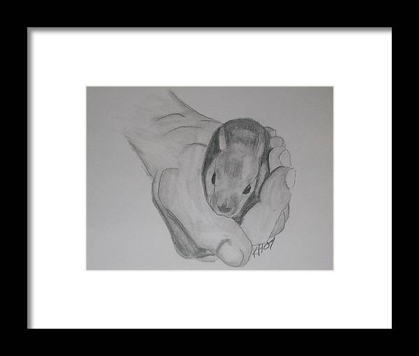 Framed Print featuring the drawing Baby Bunny by Kristen Hurley