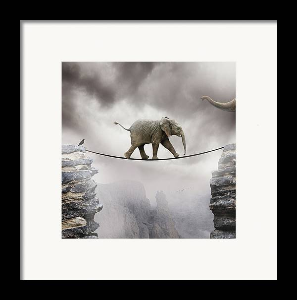 Vertical Framed Print featuring the photograph Baby Elephant by by Sigi Kolbe