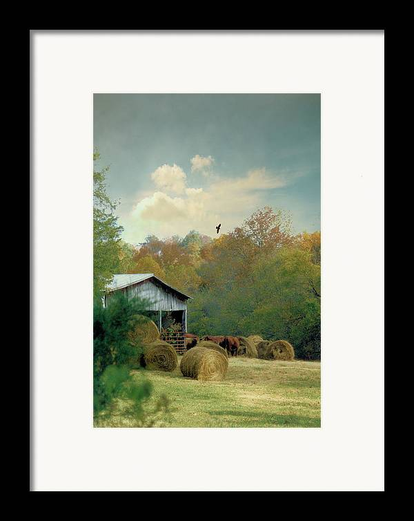 Landscapes Framed Print featuring the photograph Back At The Barn Again by Jan Amiss Photography