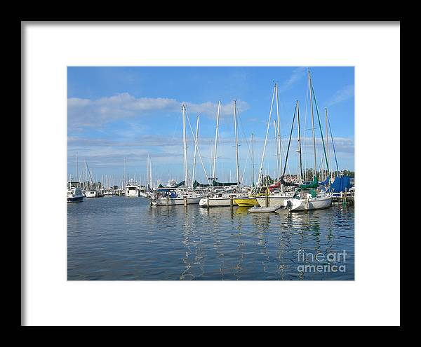 Water Framed Print featuring the photograph Back Creek by Sherri Bramlett