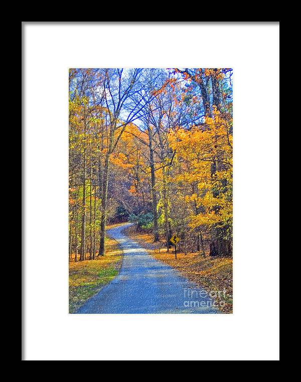 Back Road Fall Colors Foliage Revolutionary Civil War Road Valley Forge Pa Framed Print featuring the photograph Back Road Fall Foliage by David Zanzinger